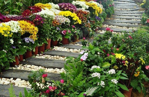 Wooden garden sleepers – Yes or no to railway sleepers in ... on soil garden, pine garden, rocks garden, roofing garden, plants garden, stone garden, compost garden,