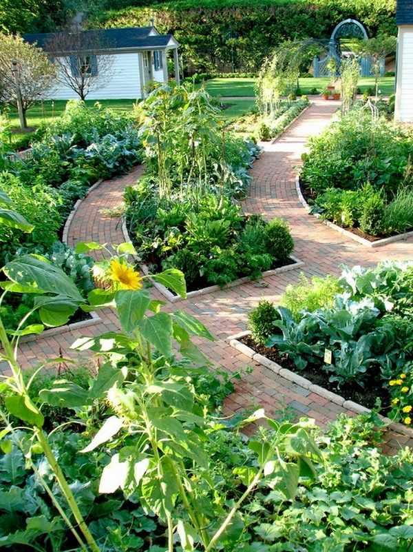 potager garden beds layout vegetable garden ideas patio landscape