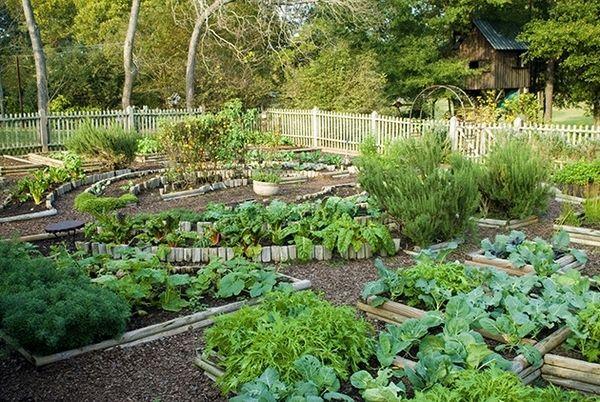 potager garden design backyard landscape ideas garden decorating ideas