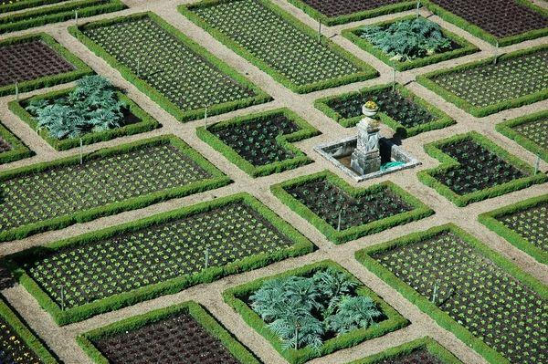 potager garden design ideas geometric garden beds