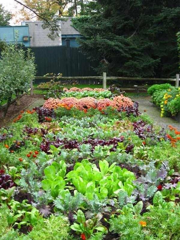 potager garden plants ideas potager garden plans