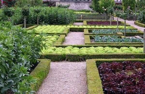 traditional potager garden design geometric pattern garden beds