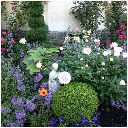 Front Yard Landscaping Archives Garden Ideas Outdoor Decor